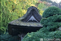 Love Kamakura / Your favorite Kamakura gardens, temples, shrines, views, places, restaurants and people - pin everything related to Kamakura here! Have fun pinning!  / by Real Japanese Gardens