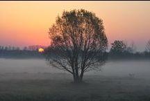 Biebrza Poland / Biebrza National Park