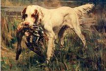 Dogs Oils / Una colección llena de pinturas de caninos en óleo, donde podemos apreciar las razas de éstos increíbles animales.  / by Bruggens Art