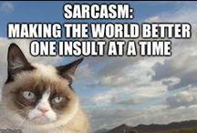 Grumpy Cat / Love you Grumpy Cat!!