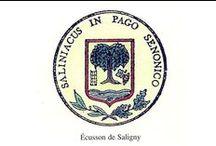 Saligny / village de Bourgogne