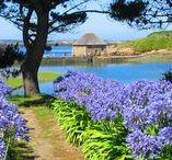 Bretagne / Magnifique Bretagne!