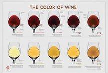 Wine & Fun
