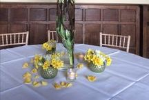 Spring Weddings at Layer Marney Tower