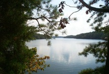 Lake Martin Guest Gallery / Lake Martin.  Inspiring scenery at every turn!