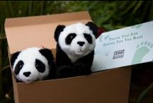 Gifts that give back / A few of our favorite things. / by Zoo Atlanta