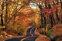 Season,Scenery and Travel