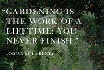 Garden / urban garden, farm house