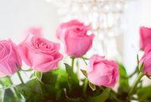 Flowers / by Varga Nane Katharina