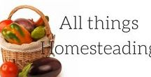 || All things Homesteading || / Homesteading is a way of mind. You can homestead in the city, or out on a farm. This board is a collection of anything and everything that is related to self sufficiency, self reliance and being frugal. Homesteading for beginners, step by step let us help you get started today! frugal living for beginners, NZ, vegetable garden, preserving food, meat rabbits, beginner gardening, tips, skills, frugal, survivalism, homesteading ideas, simple living, small farm hacks urban saving money
