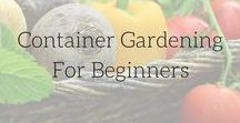|| Container Gardening for Beginners || / Growing vegetables in an urban garden is easy when you grow plants in container gardens. container gardening for beginners, vegetables, small spaces, pots, raised beds,