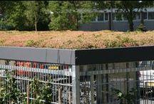 Groendak / Bekijk hier een aantal voorbeelden van groendaken (sedum) op onze FalcoLok overkapping/berging. Compenseert CO2-uitstoot, neemt fijnstof op en nog meer!
