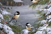 Winter / Wunderschöne Ideen und Bilder für die kalte Jahreszeit.