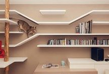 Interior: Cat Walk / It's all about living with cats.