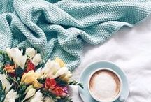 M i n t / The color mint for inspiration.