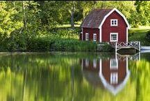 Sweden / by Lynnea Westlind