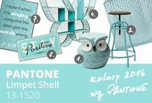 PANTONE 2016 spring - Limpet Shell