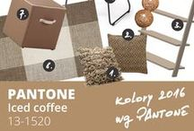 PANTONE 2016 spring - Iced coffee