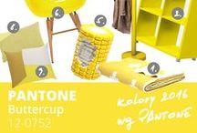 PANTONE 2016 spring - Buttercup