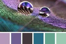 Colour Palettes.