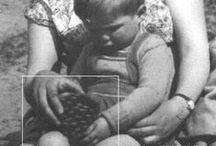 Gelre - 1954-1970