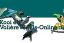 Volièrevogels-Online.nl - Aviarybirds / Kooi & Volierevogels   - http://www.volierevogels-online.nl