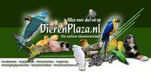 Dierenplaza.nl / Alles over dieren.
