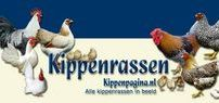 Kippenrassen - Chicken Breeds / http://www.kippenpagina.nl/kippenrassen