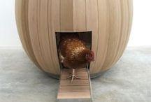 Chickencoops - Kippenhokken Ideas