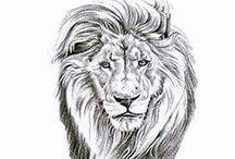 Лев.Тигр. / Раскраска