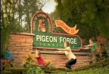 Pigeon Forge Info / by Pigeon Forge Department of Tourism
