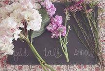 Fair Trade Wedding Wishes