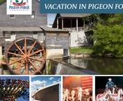 Sweepstakes / Register for a chance to win Pigeon Forge's latest sweepstakes! Find out what the prize packages are and how you can win. :)
