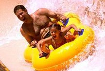 Things to Do in Pigeon Forge / Explore the fun that Pigeon Forge attractions offer!
