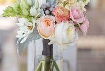Floral Fancies / by Katie Halma