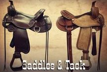 Saddles & Tack / Get ready to ride in the best saddles!