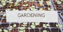 Gardening, Homesteading & Farming / Farming | Homesteading | Gardening | Self-sufficiency