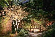 World of gardens / by Azza Shesheny