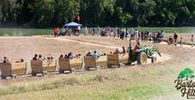 Fall Festival & Corn Maze / The Fall Festival & Corn Maze is the first of it's kind in Austin and Bastrop area! Open weekends from Sept 23 to Nov 5, the festival will be one to remember!