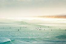 surf / by yuichirosaito