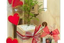 Tree Gifts by Trees Please! / Great gift ideas, delivered within New Zealand