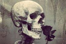 Skulls / Art / by Victor Vasquez