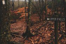 autumn   aes