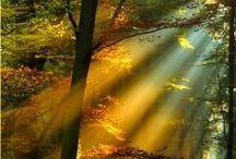 Magic light / Magic light - Sunlight - Moonlight - Sunset - Sunrise - FX light - light as it is; magic!