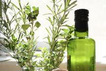 Herbalism / Herbs, Simples, and Herbal Foundations