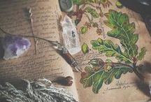 Hedgewitch / Thematic Photos for Hedgewalkers and Green Witches