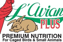L'Avian Plus  / L'Avian Plus™ is a complete line of premium nutrition for caged birds and small animals.
