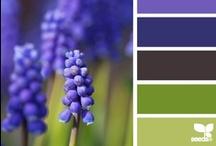 Kleur / Color