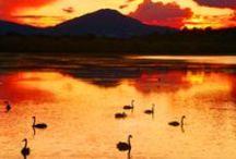 Motuoapa, Lake Taupo, New Zealand.