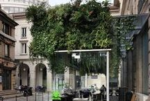 Cafe Restaurant / Cafe